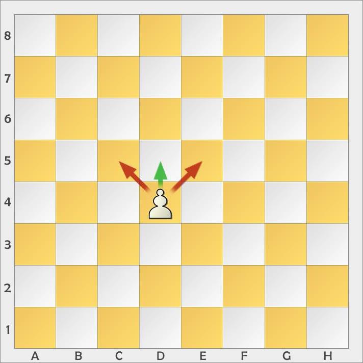 schach springer zug